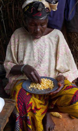 Afrikanische Frau sortiert Mais, Zentralafrikanische Republik