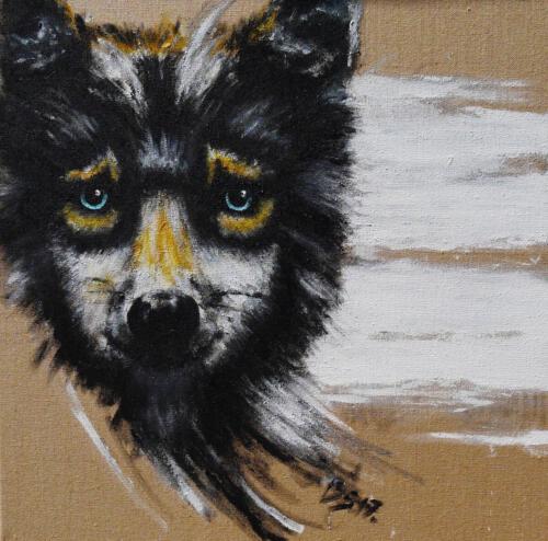 Wolf, jung 2017 Acyl 80x80