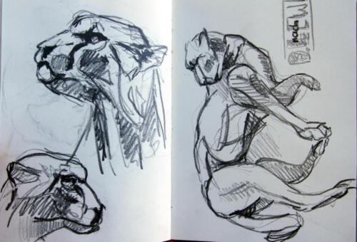 Z.Skizzenbuch 12 nach D.Lewis , 2012